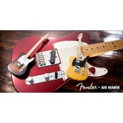 Fender Collection (7)