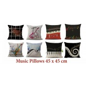 Pillows & Cover (12)
