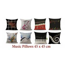 Pillows & Cover