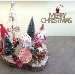 """Adorable Christmas decoration""""Merry Christmas"""""""