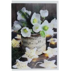 Christmas Roses Greetings Card