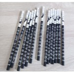 Music Pencils set of 4 Beethoven
