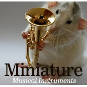 Miniature Musical Instruments (20)