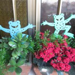 Decorative Frogs  (set of 4)